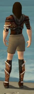 Ranger Vabbian Armor M gray chest feet back.jpg