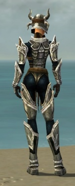 Warrior Elite Sunspear Armor F dyed back.jpg