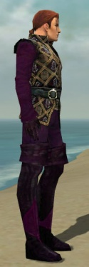 Mesmer Courtly Armor M dyed side.jpg