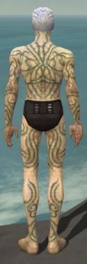 Necromancer Scar Pattern Armor M gray back.jpg