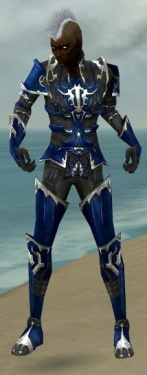 Necromancer Tyrian Armor M dyed front.jpg