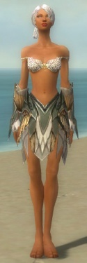 Paragon Norn Armor F gray arms legs front.jpg
