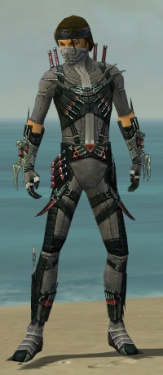 Assassin Elite Canthan Armor M gray front.jpg
