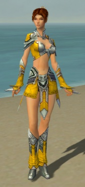 Elementalist Asuran Armor F dyed front.jpg