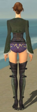 Mesmer Rogue Armor F gray chest feet back.jpg