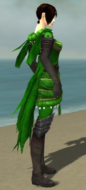 Ravenheart Witchwear F dyed side alternate.jpg