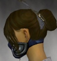 Assassin Norn Armor F gray head side.jpg