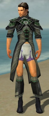 Elementalist Elite Luxon Armor M gray chest feet front.jpg