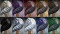 Equine Aegis colored.jpg