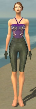 Mesmer Rogue Armor F gray arms legs front.jpg