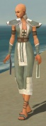 Monk Krytan Armor F gray front.jpg
