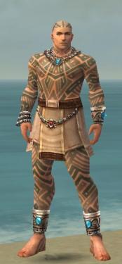 Monk Labyrinthine Armor M gray front.jpg