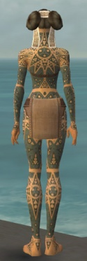 Monk Star Armor F gray back.jpg
