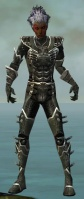 Necromancer Kurzick Armor M gray front.jpg