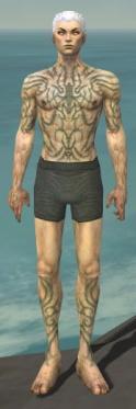 Necromancer Scar Pattern Armor M gray chest feet front.jpg