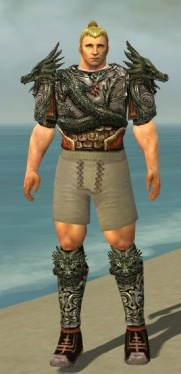 Warrior Elite Canthan Armor M gray chest feet front.jpg