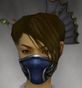Assassin Norn Armor F gray head front.jpg