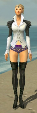 Mesmer Ascalon Armor F gray chest feet front.jpg