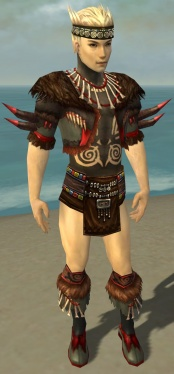 Ritualist Norn Armor M gray chest feet front.jpg
