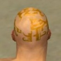 Monk Ancient Armor M dyed head back.jpg