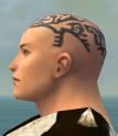Monk Elite Sunspear Armor M gray head side.jpg