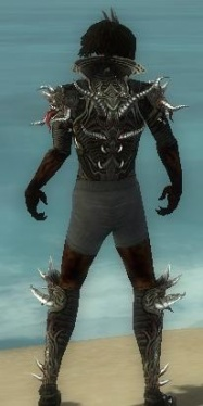 Necromancer Elite Canthan Armor M gray chest feet back.jpg