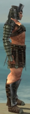 Warrior Elite Gladiator Armor M gray side.jpg