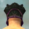 Warrior Elite Luxon Armor M dyed head back.jpg