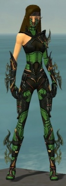 Assassin Elite Kurzick Armor F dyed front.jpg