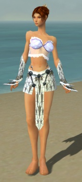 Elementalist Elite Iceforged Armor F gray arms legs front.jpg