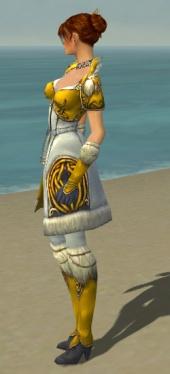 Elementalist Norn Armor F dyed side.jpg