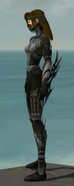 Assassin Vabbian Armor F gray side.jpg