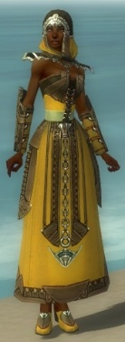 Dervish Asuran Armor F dyed front.jpg