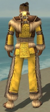 Monk Norn Armor M dyed back.jpg