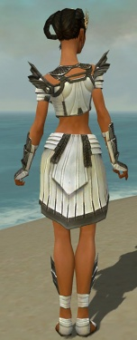 Paragon Ancient Armor F gray back.jpg