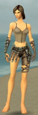 Warrior Elite Gladiator Armor F gray arms legs front.jpg