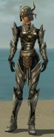Warrior Elite Sunspear Armor F gray front.jpg