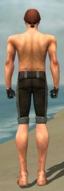 Mesmer Tyrian Armor M gray arms legs back.jpg