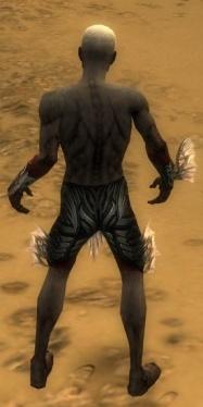 Necromancer Primeval Armor M gray arms legs back.jpg