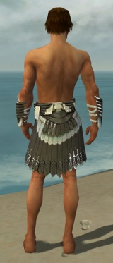Paragon Elite Sunspear Armor M gray arms legs back.jpg