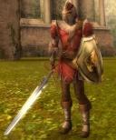 Pre-Searing Ascalon Guard.jpg