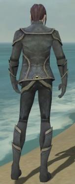 Elementalist Ascalon Armor M gray back.jpg