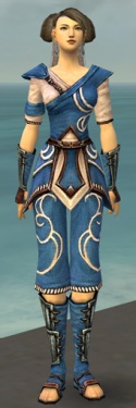 Monk Shing Jea Armor F dyed front.jpg