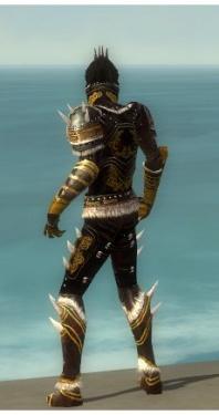 Necromancer Norn Armor M dyed back.jpg