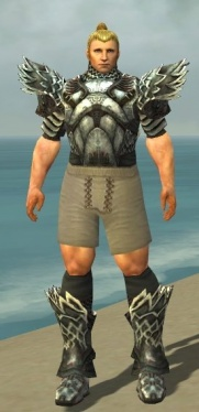 Warrior Silver Eagle Armor M gray chest feet front.jpg