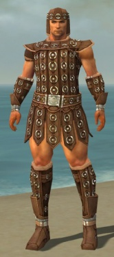 Warrior Ascalon Armor M dyed front.jpg