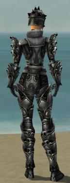Warrior Obsidian Armor F gray back.jpg