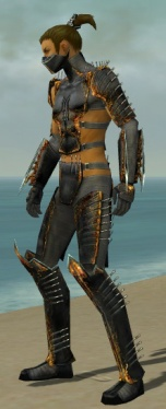 Assassin Exotic Armor M gray side.jpg