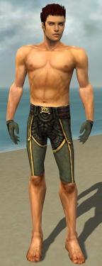 Mesmer Asuran Armor M gray arms legs front.jpg