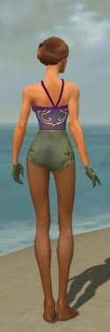 Mesmer Elite Canthan Armor F gray arms legs back.jpg